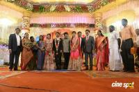Raj TV MD Daughter Marriage Reception (25)