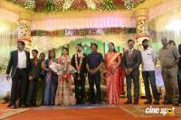 Raj TV MD Daughter Marriage Reception (26)