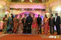 Raj TV MD Daughter Marriage Reception (28)