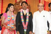 Raj TV MD Daughter Marriage Reception (40)