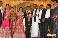 Raj TV MD Daughter Marriage Reception (49)