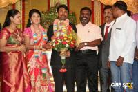 Raj TV MD Daughter Marriage Reception (9)
