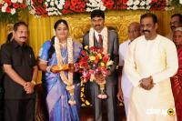 Anbalaya Prabhakaran Daughter Wedding Reception (17)