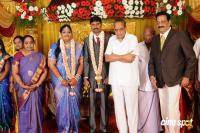 Anbalaya Prabhakaran Daughter Wedding Reception (18)