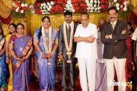 Anbalaya Prabhakaran Daughter Wedding Reception (19)
