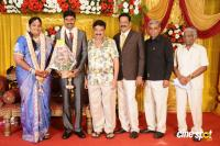 Anbalaya Prabhakaran Daughter Wedding Reception (2)
