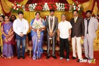 Anbalaya Prabhakaran Daughter Wedding Reception (52)