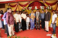 Anbalaya Prabhakaran Daughter Wedding Reception (59)