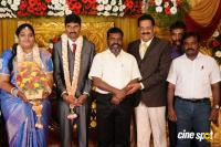 Anbalaya Prabhakaran Daughter Wedding Reception (60)