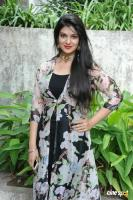 Siya Gautham at Pilavani Perantam Launch (13)