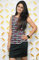Amrutha Kannada Actress Photos
