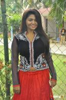 Roshini Sridharan Actress Photos