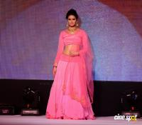 Meenakshi Dixit at Legacy of Prestige Fashion Show (1)