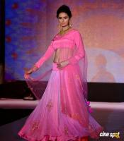 Meenakshi Dixit at Legacy of Prestige Fashion Show (10)
