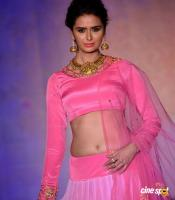 Meenakshi Dixit at Legacy of Prestige Fashion Show (11)