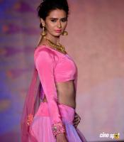 Meenakshi Dixit at Legacy of Prestige Fashion Show (12)
