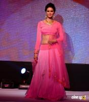 Meenakshi Dixit at Legacy of Prestige Fashion Show (2)