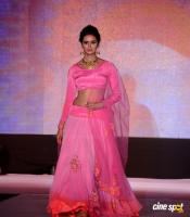 Meenakshi Dixit at Legacy of Prestige Fashion Show (3)
