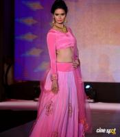 Meenakshi Dixit at Legacy of Prestige Fashion Show (8)
