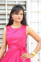 Suma Telugu Actress Photos