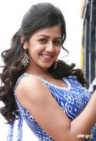 Nikki Galrani photo (2)