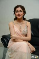 Sayesha Saigal Photos (11)