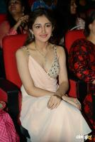 Sayesha Saigal Photos (13)