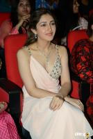Sayesha Saigal Photos (8)