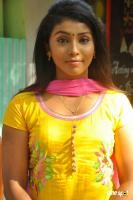 Sindhu Tamil Actress Photos