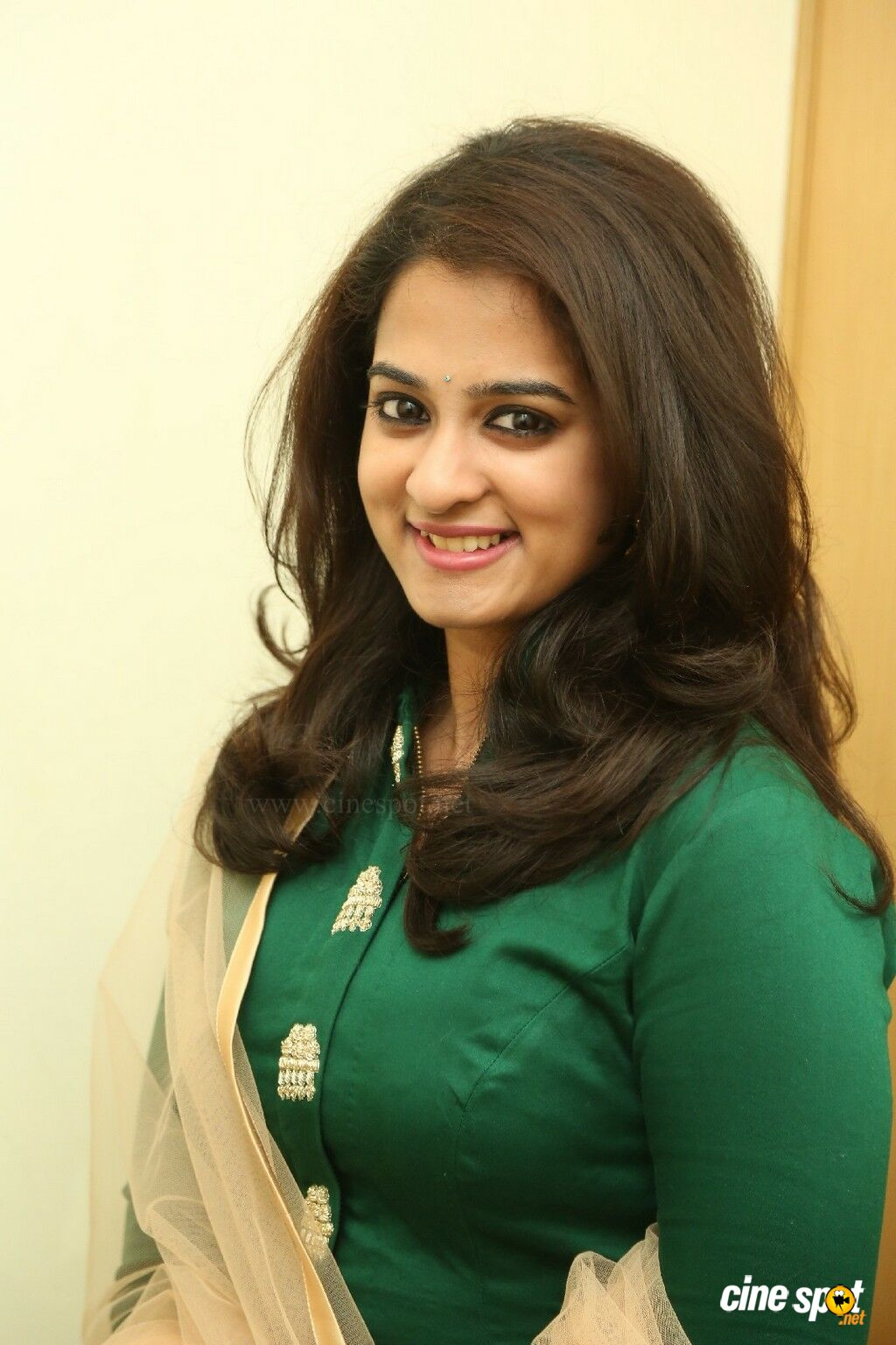 nanditha raj at ram leela movie success meet 20