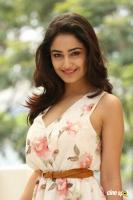 Tridha Choudhury Latest Gallery (1)