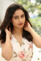 Tridha Choudhury Latest Gallery (13)