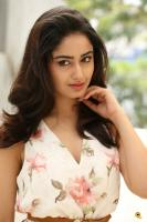 Tridha Choudhury Latest Gallery (15)