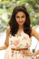 Tridha Choudhury Latest Gallery (18)