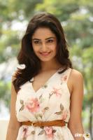 Tridha Choudhury Latest Gallery (2)