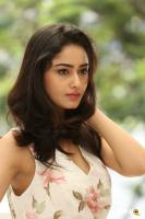 Tridha Choudhury Latest Gallery (22)