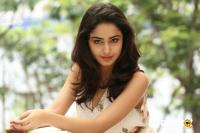 Tridha Choudhury Latest Gallery (23)