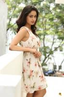 Tridha Choudhury Latest Gallery (26)