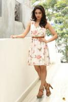Tridha Choudhury Latest Gallery (29)