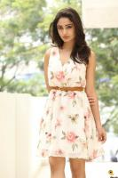 Tridha Choudhury Latest Gallery (31)