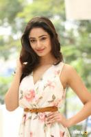 Tridha Choudhury Latest Gallery (33)