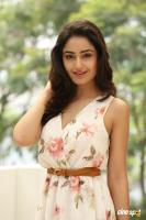 Tridha Choudhury Latest Gallery (36)