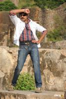 Jagapati Babu ,photos,images,stills (3)