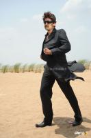 Jagapati Babu ,photos,images,stills (4)