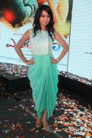 Radhika Pandit at Endendigu Audio Release (3)