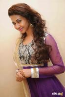 Gayatri Iyer New Gallery (4)