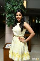 Priya Anand at Vai Raja Vai Press Meet (1)