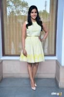 Priya Anand at Vai Raja Vai Press Meet (2)