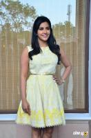 Priya Anand at Vai Raja Vai Press Meet (5)