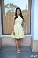 Priya Anand at Vai Raja Vai Press Meet (7)